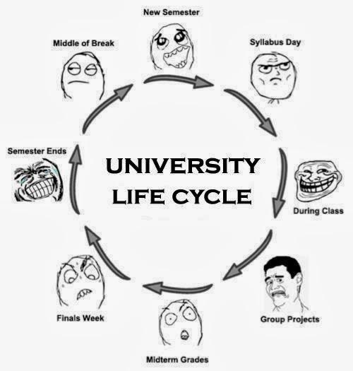 the_university_life_cycle.jpg