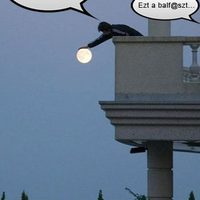Te simogattál már Holdat?