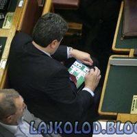 Magyar politikusok