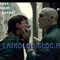 Harry és Voldemort kimaradt jelenete