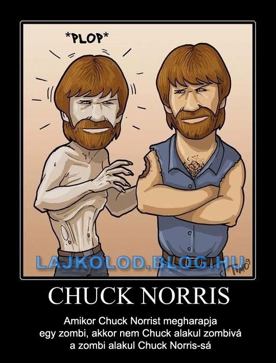 Mi történik ha CHUCK NORRIST megharapja egy zombi? - Lájk
