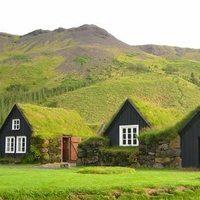 Hőszigetelés hatékonyan: Építsen zöld tetőt!