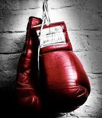 boxhandschuchen.jpg