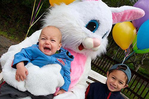 crying-bunny-sideways-angle_1.jpg