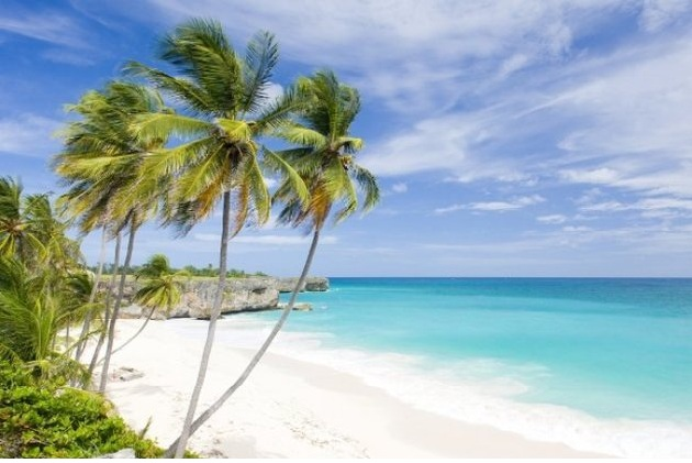 Bottom part, Barbados.jpg