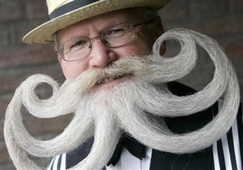 intense-beards-curly-white.jpg