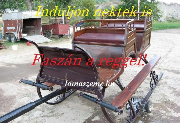 fasz_n_1409217378.jpg_615x421