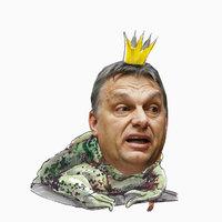 Ezért a versért venné vissza a dunaújvárosi Fidesz a Quimby kitüntetését