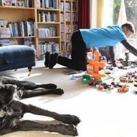Egy jó kutya támogathatja az autista személyt
