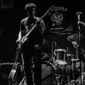 Konceptuális keresgélés - Sungazers-dal és klippremier