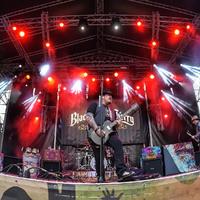 Black Stone Cherry-koncert képekben