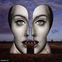 Adele feje minden lemezborítóra illik