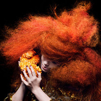 Björk betegség miatt koncerteket mondott le