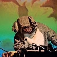 Kanadai gépi blues az Akváriumban - Kid Koala-koncert