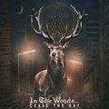 A pszichedeliától a fenyőszagú black metalig - Az In The Woods... új lemezéről