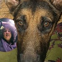 A Mars Volta énekese szerint szcientológusok ölték meg a kutyáját
