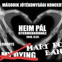Holnap jótékonysági koncert a Heim Pál Gyermekkórház javára az S8 Underground Clubban