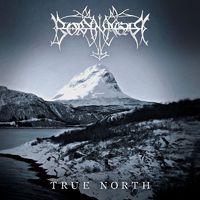 True North - Egybekezdéses ítélet a Borknagar új lemezéről