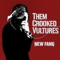 Az első hivatalos Them Crooked Vultures-kislemez