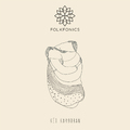 Tiszta forrás - Meghallgattuk a Folkfonics Két karodban című lemezét
