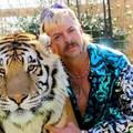 Tiger King: Murder, Mayhem And Madness - Kritika a Tigrisvilágról