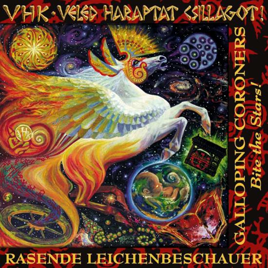 VHK Veled cover 2012_1.jpg