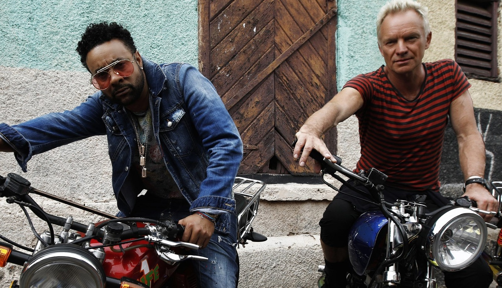 sting-shaggy.jpg