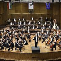 Alakulóban van, hogy kik zenélnek majd Larával a budapesti színpadon