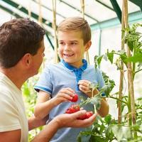 20 dolog, amit az apáktól tanulhatunk