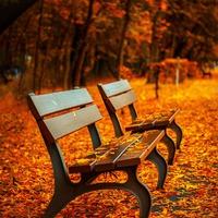 10 gyakorlat, ami azonnal kihúzhat az őszi rossz hangulatból