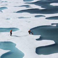 az északi jégsapka újrafagyasztása
