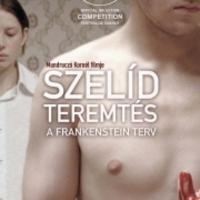 Kritika: Frankenstein, a mézesmadzag