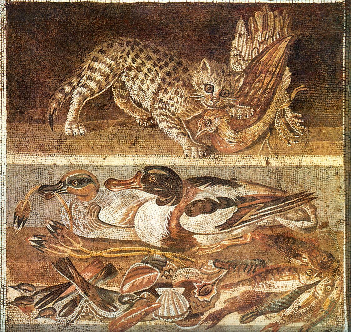 11_1_kat_vangt_vogel_en_stilleven_met_eenden_1e_vc_huis_pompeji.jpg