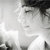 Álmok: Egy rózsa illata