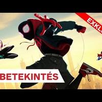 Pókember: Irány a Pókverzum!