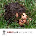 Shock!!! fotó vagy stock fotó?
