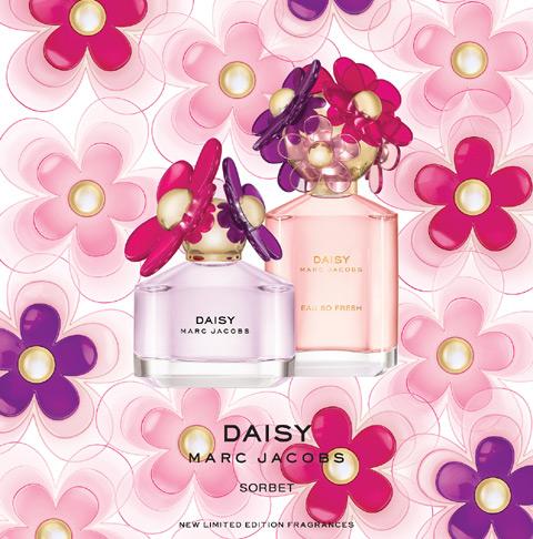 daisy sorbet.jpg