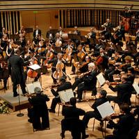 A Budapesti Fesztiválzenekar koncertje – Zeneakadémia, 2013. november 7.