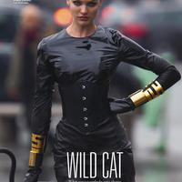 Egy igazi vadmacska, Candice Swanepoel