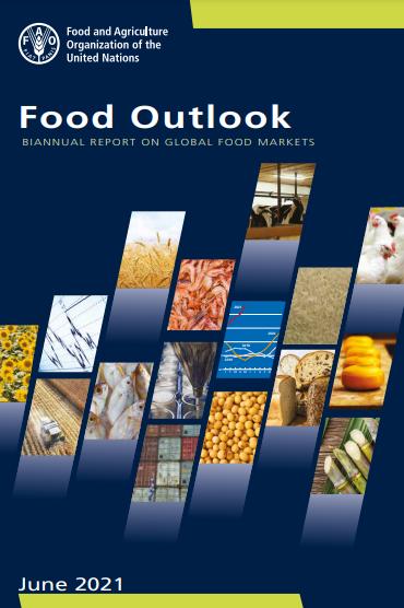 food_outlook2021.png