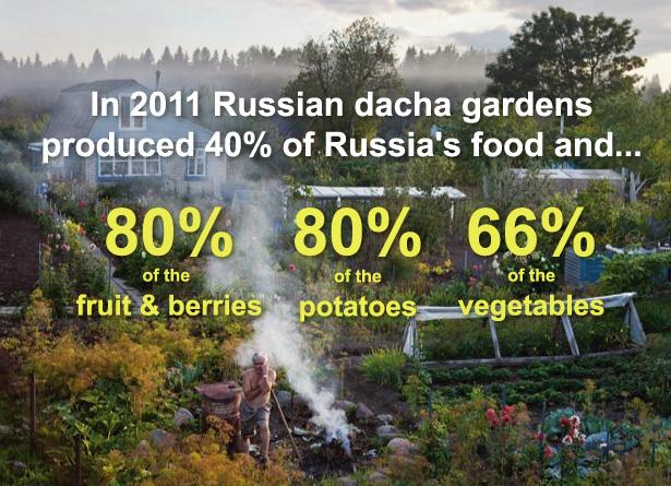 russian-dacha3.jpg