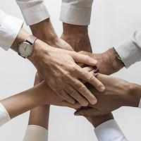 Építsetek szervezeti kultúrát, ne csak lózungokat!