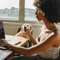4 dolog, amire jó ha figyelsz, ha hibrid munkahelyen dolgozol