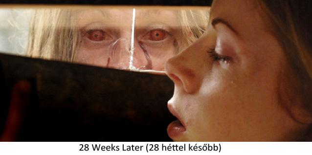zombi6.jpg