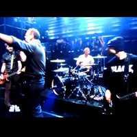 Bad Religion a tévében