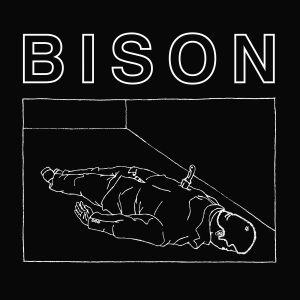 bison_ep.jpg