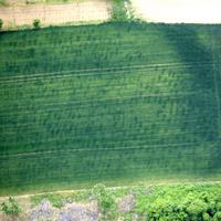 Leletek nélkül: soros temetők légi felderítése
