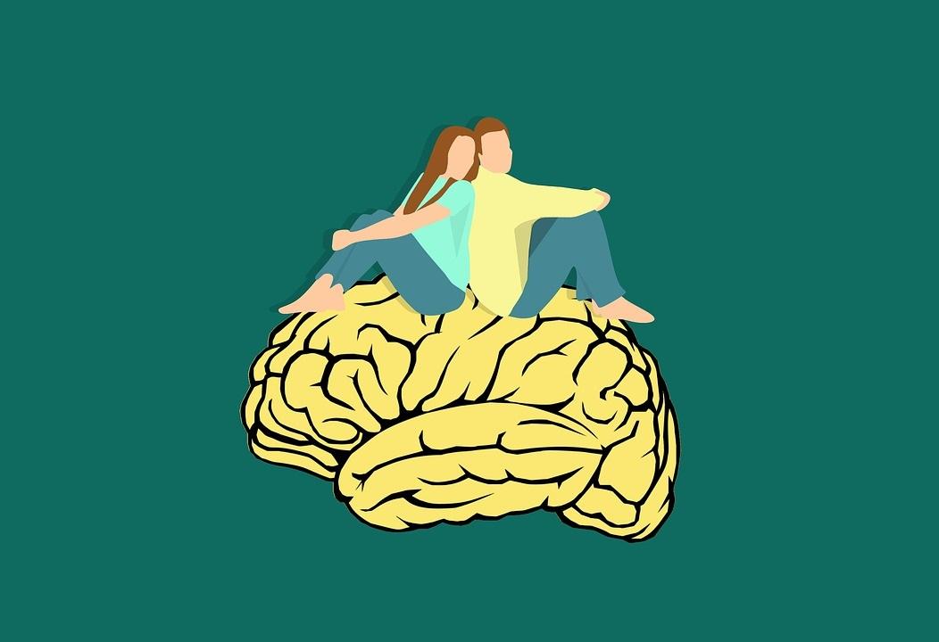 brain_couple-3254074_960_720.jpg