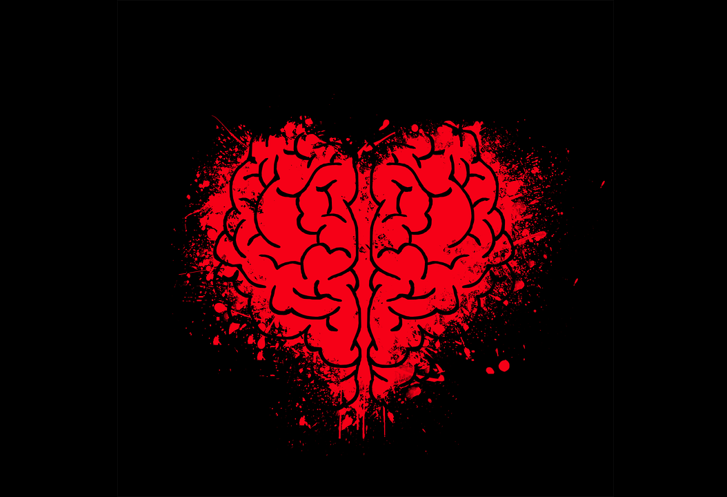 brain_heart-2356621_960_720.png