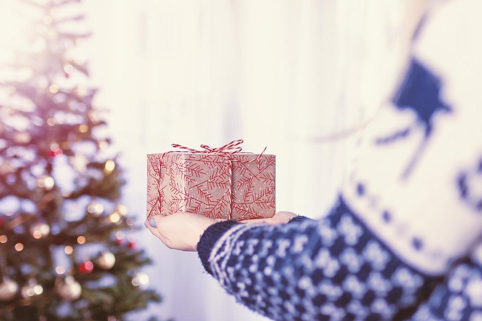 christmas-2980687_960_720.jpg